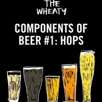 Components of Beer Tasting Series